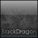 BlackDragon